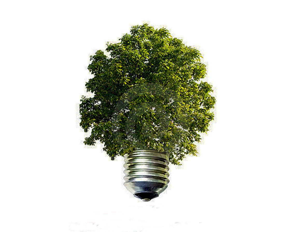 Dove si gettano le lampadine esaurite pianeta delle idee for Lampadine led lexman
