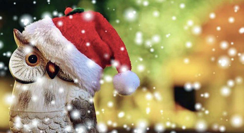 Idee Creative Natale 2016 : Come riciclare correttamente gli imballaggi di natale pianeta